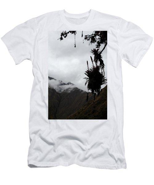 Cloud Forest Musings Men's T-Shirt (Athletic Fit)