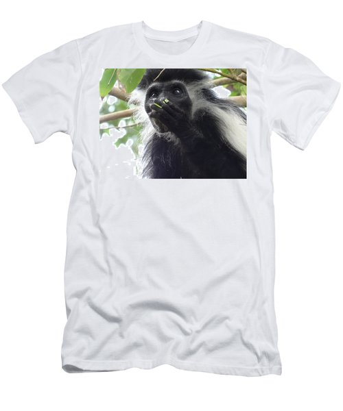 Colobus Monkey Eating Leaves In A Tree 2 Men's T-Shirt (Athletic Fit)