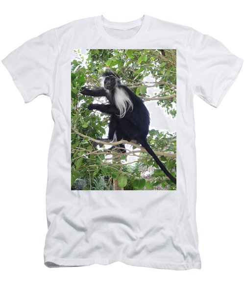 Colobus Monkey Eating Leaves In A Tree Men's T-Shirt (Athletic Fit)
