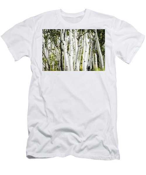 Colorado Aspens Men's T-Shirt (Slim Fit) by Dawn Romine