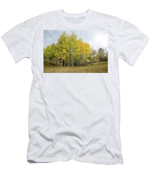 Colorado Aspens In Autumn Men's T-Shirt (Athletic Fit)