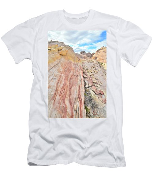 Colorful Crest In Valley Of Fire Men's T-Shirt (Slim Fit) by Ray Mathis