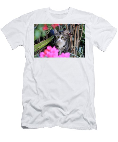 Colorful Kitty Men's T-Shirt (Athletic Fit)