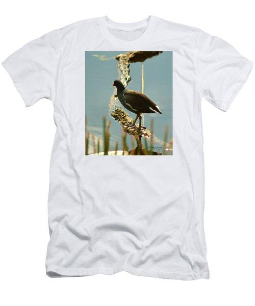 Common Moor Hen Men's T-Shirt (Athletic Fit)
