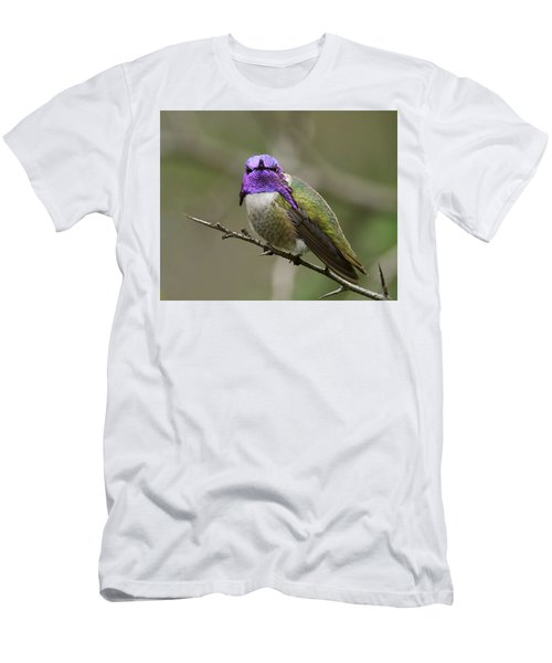 Men's T-Shirt (Slim Fit) featuring the photograph Costa's Hummingbird, Solano County California by Doug Herr