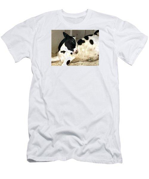 Cow Cutie Men's T-Shirt (Athletic Fit)
