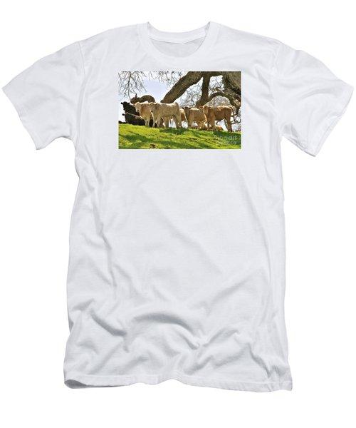 Cows Under Oak #2 Men's T-Shirt (Slim Fit) by Amy Fearn