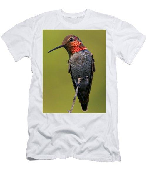 Coy Men's T-Shirt (Athletic Fit)
