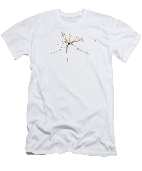 Cranefly Species Tipula Oleracea Men's T-Shirt (Athletic Fit)