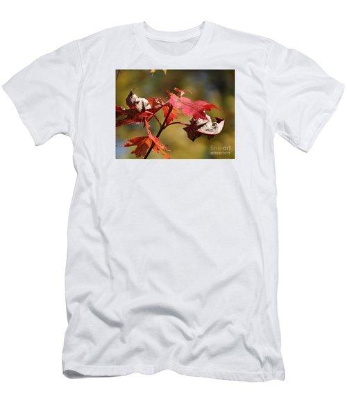 Crimson Fall Men's T-Shirt (Slim Fit) by J L Zarek