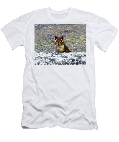 Curious Chipmunk Men's T-Shirt (Slim Fit) by Paul Meinerth