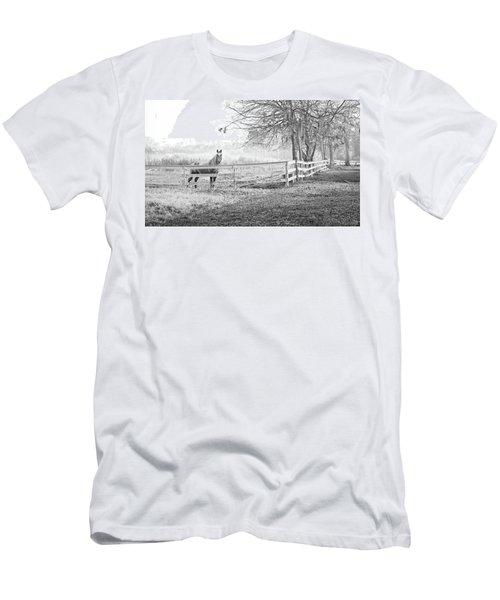 Curious Fog Men's T-Shirt (Athletic Fit)