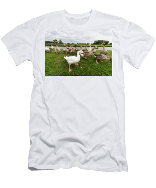 Men's T-Shirt (Slim Fit) featuring the photograph Curious Geese by Hans Engbers
