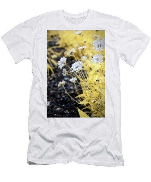 Daisey Men's T-Shirt (Slim Fit) by Paul Seymour