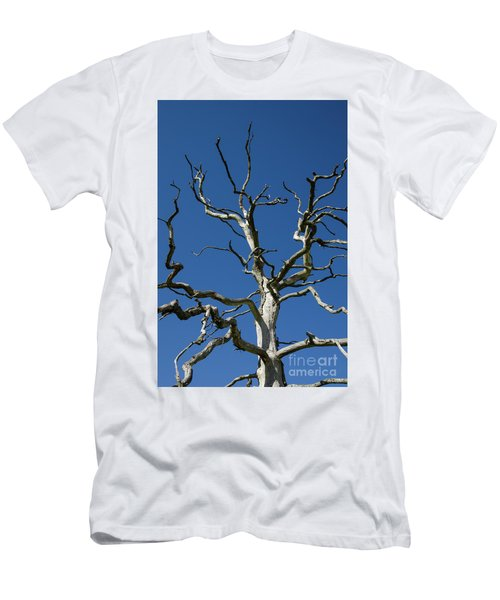 Dead Oak Tree Men's T-Shirt (Slim Fit) by Kennerth and Birgitta Kullman