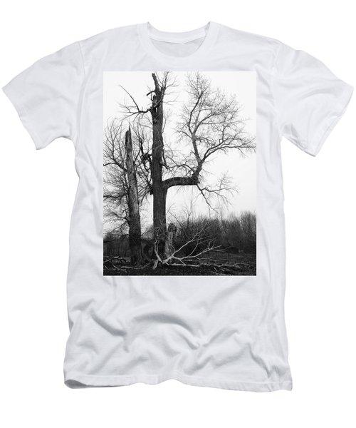Dead Tree Ten Mile Creek Men's T-Shirt (Athletic Fit)