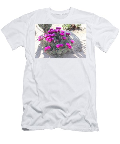 Desert Cactus Men's T-Shirt (Athletic Fit)