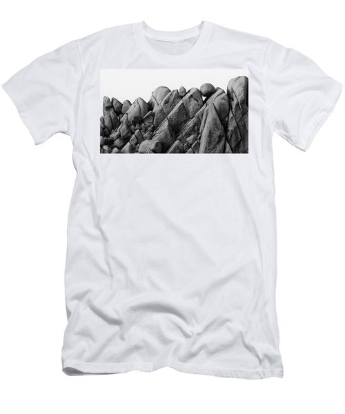 Desert Math Men's T-Shirt (Athletic Fit)