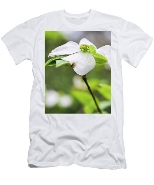 Dogwood Blossom Standing Men's T-Shirt (Athletic Fit)