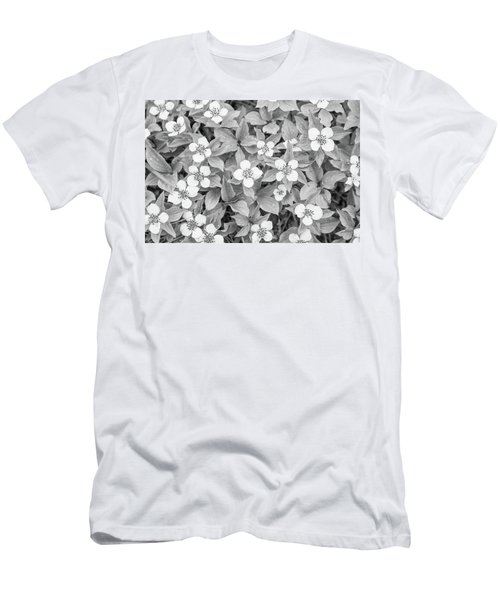 Dogwood In The Rain Men's T-Shirt (Athletic Fit)