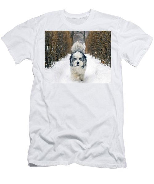 Doing The Dog Walk Men's T-Shirt (Slim Fit) by Keith Armstrong
