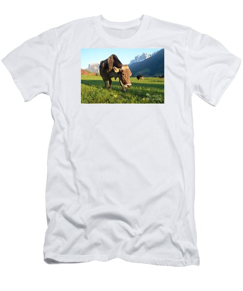 Dolomites Mountain Cow Close-up Men's T-Shirt (Slim Fit) by IPics Photography