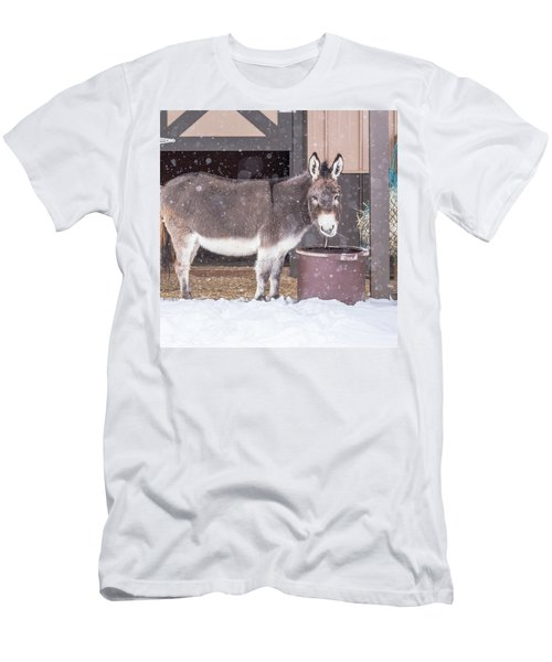 Donkey Watching It Snow Men's T-Shirt (Athletic Fit)