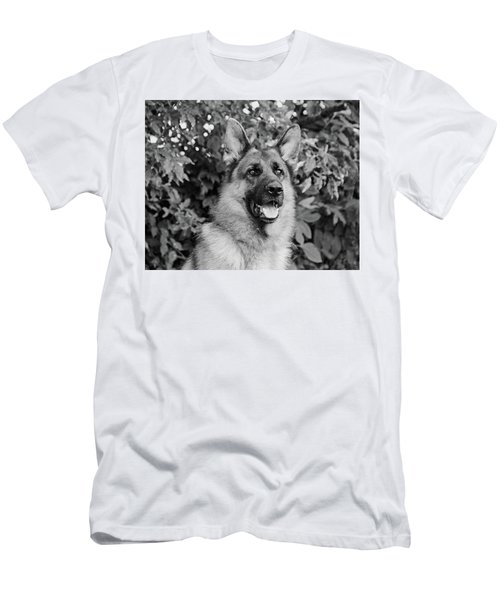 Men's T-Shirt (Slim Fit) featuring the photograph Drake Watching by Sandy Keeton
