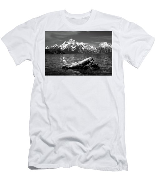 driftwood and Mt. Moran Men's T-Shirt (Athletic Fit)