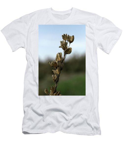 Drying Flower Men's T-Shirt (Slim Fit) by Shlomo Zangilevitch
