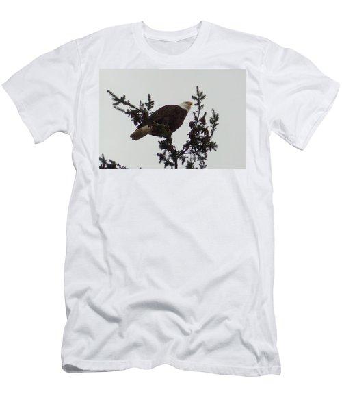 Eagle In A Tree Men's T-Shirt (Slim Fit) by Karen Molenaar Terrell