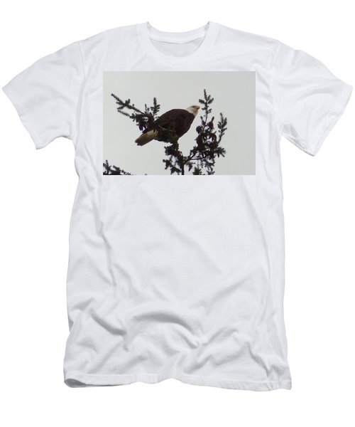 Eagle In A Tree Men's T-Shirt (Athletic Fit)