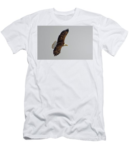 Eagle In Flight Men's T-Shirt (Athletic Fit)