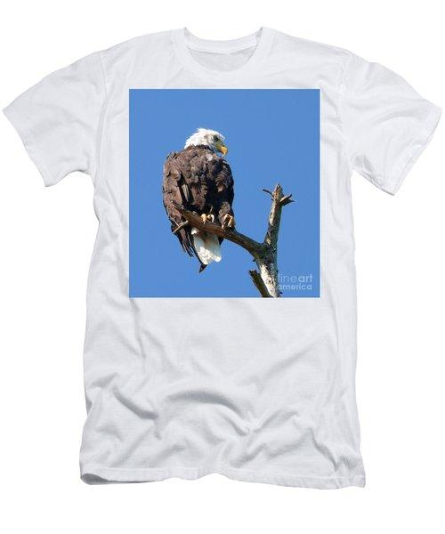 Eagle Lookout Men's T-Shirt (Athletic Fit)