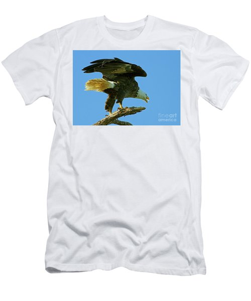 Eagle Mom, The Scolding Men's T-Shirt (Athletic Fit)