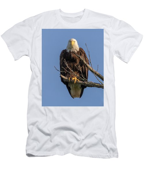 Eagle Stare Men's T-Shirt (Athletic Fit)