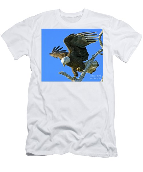Eagle's Balance Men's T-Shirt (Athletic Fit)