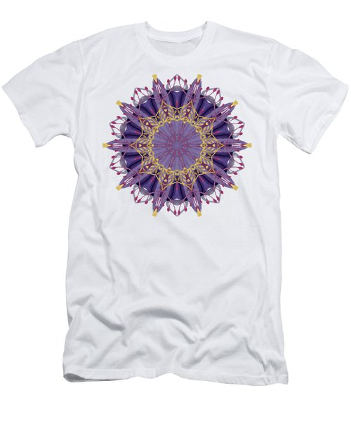 Early Spring Mandala Men's T-Shirt (Athletic Fit)