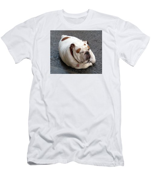 Eduardo Of Firenze Dog Men's T-Shirt (Slim Fit) by Lisa Boyd