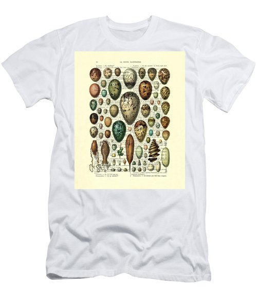 Eggs Collection Men's T-Shirt (Athletic Fit)
