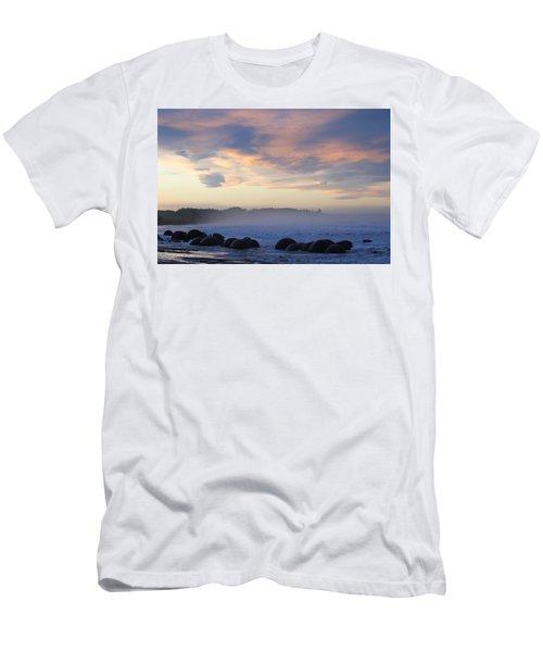 Elephant Rocks Men's T-Shirt (Athletic Fit)