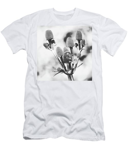Eryngium #flower #flowers Men's T-Shirt (Athletic Fit)