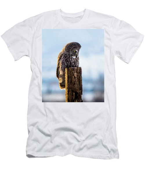 Eye On The Prize - Great Gray Owl Men's T-Shirt (Athletic Fit)