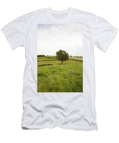 Fairy Tree In Ireland Men's T-Shirt (Athletic Fit)