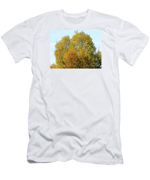 Fall Tree Men's T-Shirt (Slim Fit) by Craig Walters