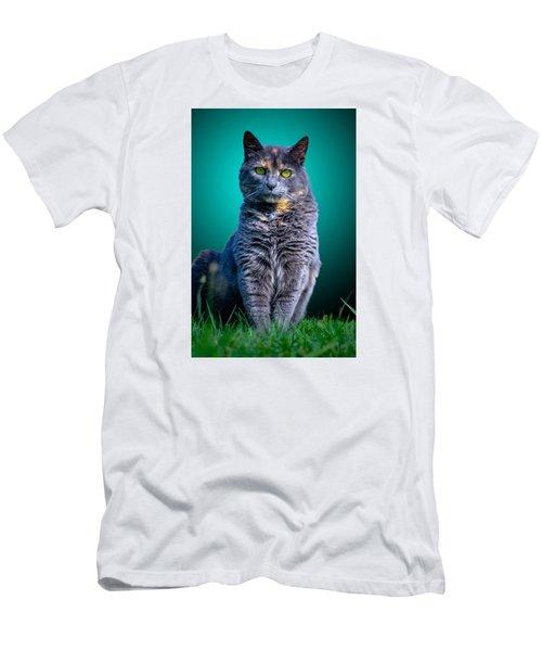 Feline Shine Men's T-Shirt (Slim Fit) by Brian Stevens