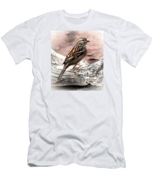 Men's T-Shirt (Slim Fit) featuring the photograph Female Sparrow by Elaine Malott