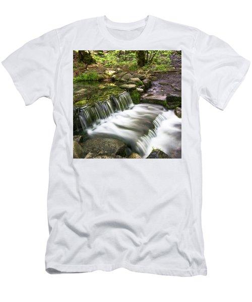 Fern Spring 4 Men's T-Shirt (Slim Fit) by Ryan Weddle