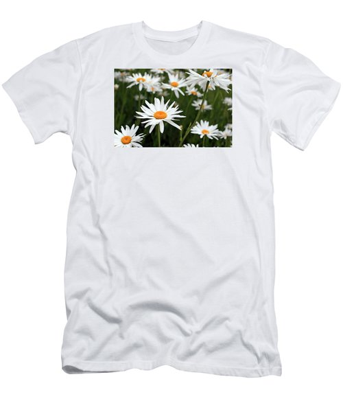 Field Of Daisies Men's T-Shirt (Slim Fit) by Dorothy Cunningham