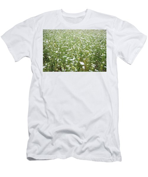 Field Of Queen Annes Lace Men's T-Shirt (Athletic Fit)